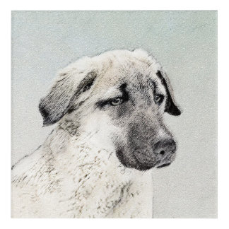 Anatolian Shepherd Painting - Original Dog Art