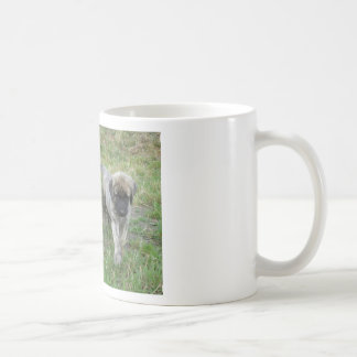 Anatolian Shepherd Puppies Dog Coffee Mug