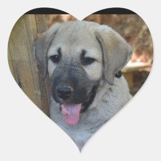 Anatolian Shepherd Puppy Heart Sticker