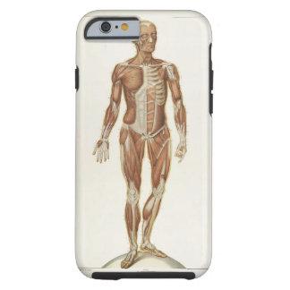 Anatomía anterior funda de iPhone 6 tough