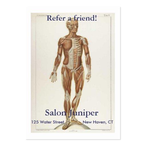 Anatomía anterior tarjetas de visita grandes