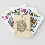 Anatomía biológica de la tortuga del vintage baraja de cartas