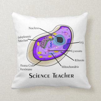 Anatomía de la célula humana de la almohada del