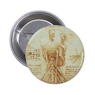 Anatomía de Leonardo DA Vinci- del cuello Pin