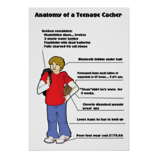 Anatomía de un cacher adolescente póster