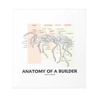 Anatomía de un constructor (anatomía de la hormiga bloc de notas