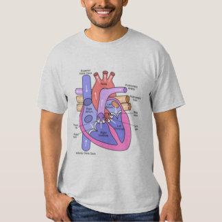 Anatomía de un corazón solo poleras
