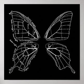 Anatomía de un diagrama del vintage del ala de la  póster