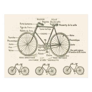 Anatomía de una bicicleta postales