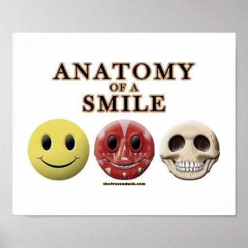 Anatomía de una sonrisa posters