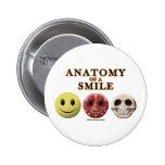 Anatomía de una sonrisa pins