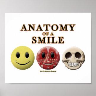 Anatomía de una sonrisa póster