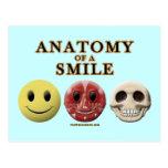 Anatomía de una sonrisa tarjetas postales