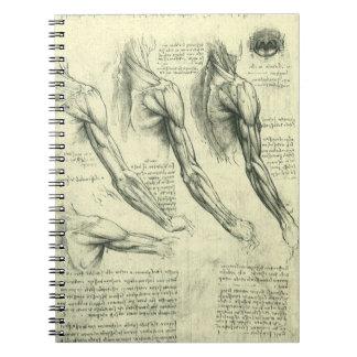 Anatomía del brazo y del hombro de Leonardo da Libro De Apuntes Con Espiral