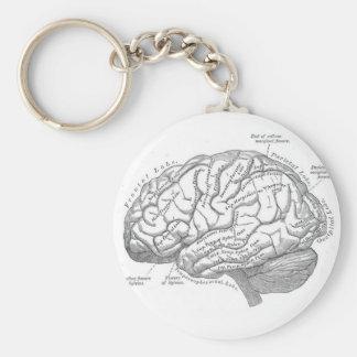 Anatomía del cerebro del vintage llavero redondo tipo pin