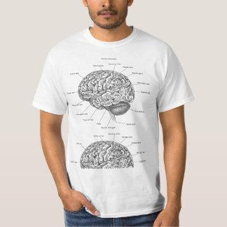 Anatomía del cerebro remera