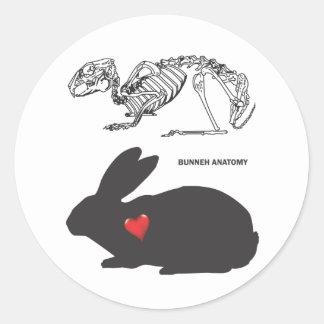 Anatomía del conejito etiqueta redonda