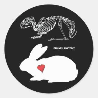 Anatomía del conejito pegatina redonda