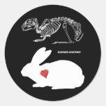 Anatomía del conejito pegatinas redondas