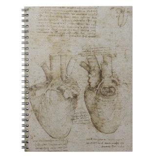 Anatomía del corazón de da Vinci Cuadernos