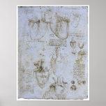 Anatomía del corazón humano, Leonardo da Vinci Posters