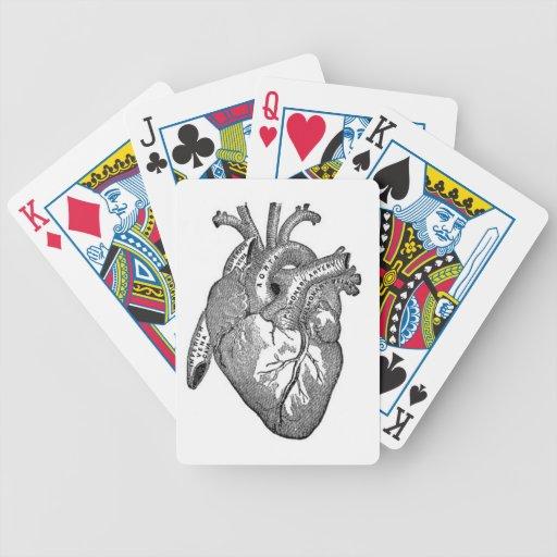 anatomía del corazón-vintage barajas