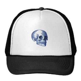 Anatomía del cráneo del vintage gorras
