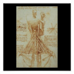 Anatomía del cuello de Leonardo da Vinci C. 1515 Posters