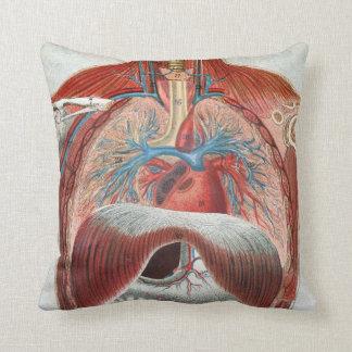 Anatomía del cuerpo humano almohada