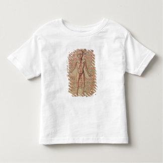 Anatomía del cuerpo humano poleras