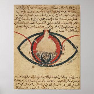 Anatomía del ojo, de un libro en enfermedades ocul posters