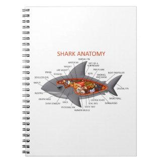 Anatomía del tiburón cuaderno