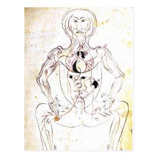 Anatomía delantera médica persa del siglo XIII del Postales