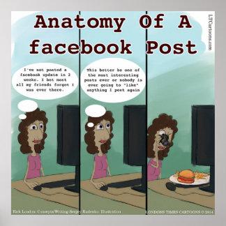 Anatomía divertida del poste del facebook de A Póster