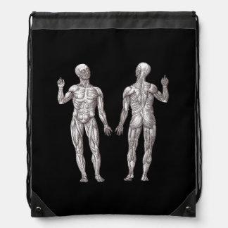 Anatomía humana - el sistema muscular mochila