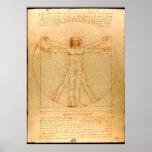 Anatomía humana, hombre de Vitruvian de Leonardo Póster
