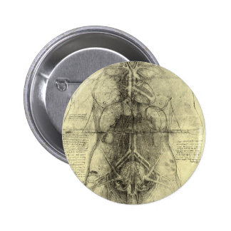 Anatomía humana, torso femenino de Leonardo da Pin Redondo De 2 Pulgadas