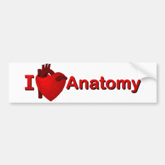 Anatomía I <3 Pegatina Para Auto