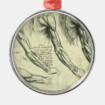 Anatomía Leonardo da Vinci de los músculos del bra Ornamento Para Arbol De Navidad