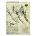 Anatomía Leonardo da Vinci de los músculos del Tarjeta De Felicitación