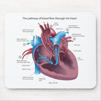 Anatomía Mousepad del corazón Tapetes De Ratones