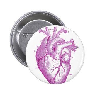 Anatomía púrpura del corazón del vintage pin redondo de 2 pulgadas