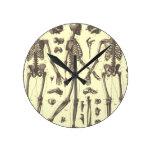 Anatomía Relojes De Pared