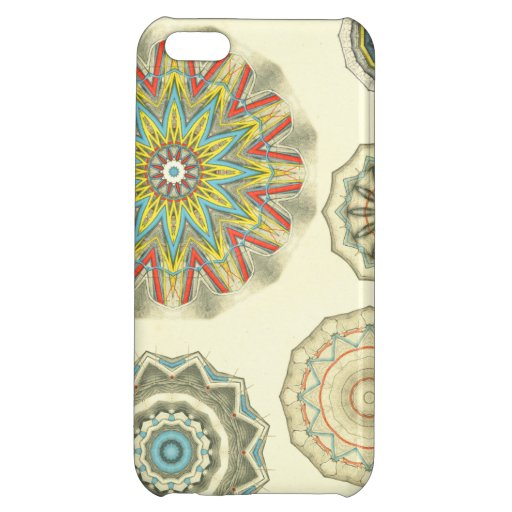 Anatomical Art Hand and Knee iPhone 5C Cases
