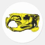 Anatomical Beaver Skull Yellow Round Stickers