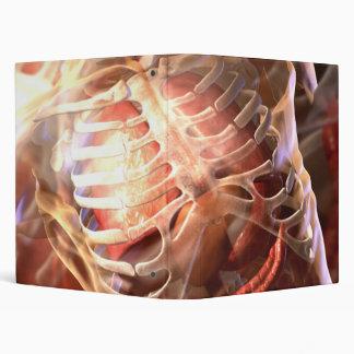 Anatomical Binder