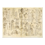 Anatomical Chart from Cyclopaedia 1728 Stretched Canvas Print
