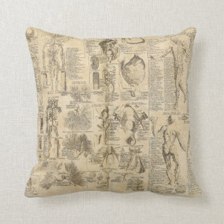 Anatomical Chart from Cyclopaedia 1728 Pillow