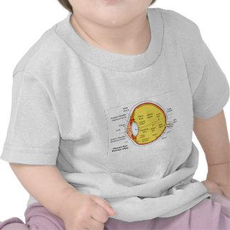 Anatomical Diagram of the Human Eye Ball T-shirts