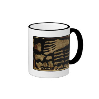 Anatomical drawing of the bones of the foot coffee mugs
